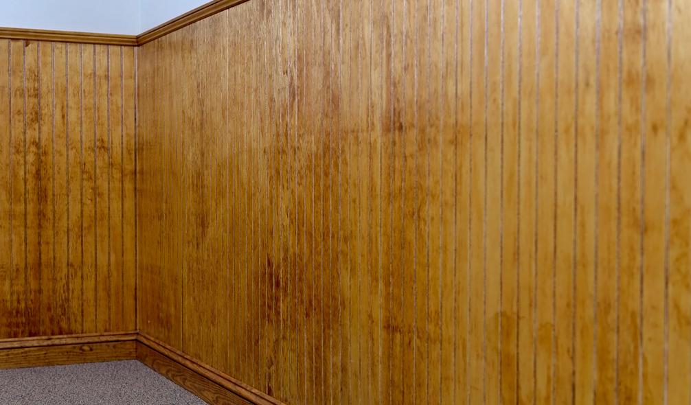 <p><em>RevBead</em>® Plywood Beadboard Wainscoting</p>