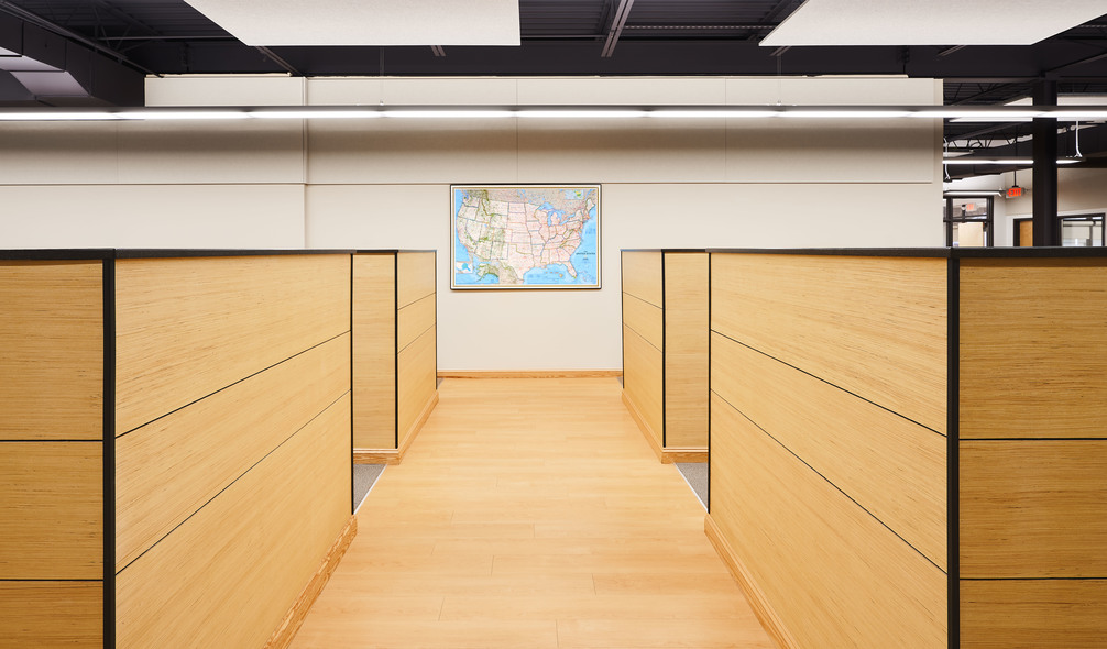 <p><em>RevolutionPly</em><span>® plywood used as wall paneling</span></p>